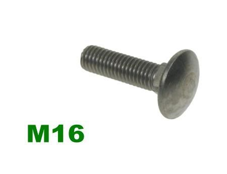 Picture for category M16 Coachbolt A2 Stainless