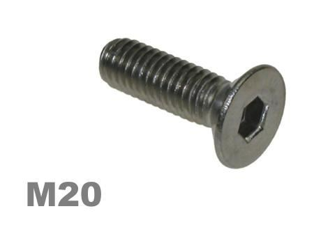 Picture for category M20 Socket Countersunk Zinc Finish