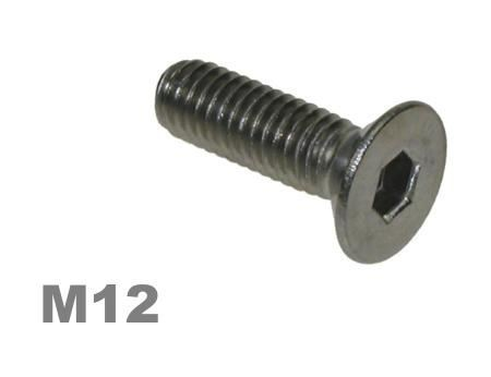 Picture for category M12 Socket Countersunk Zinc Finish